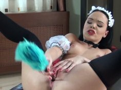 Hot petite brunette house maid Angelina Wild cleans her holes with dust brush.