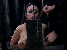 Beauty gets hardcore clamping for her giant racks